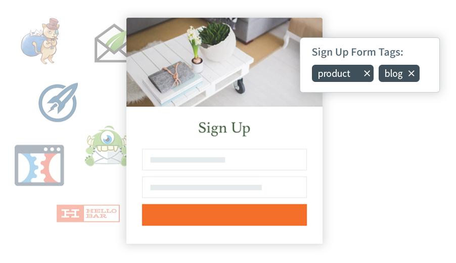 Email signup webform
