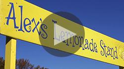 AWeber Video Lemon Bowl 13